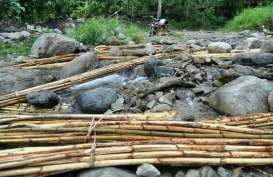 Produk Hasil Hutan : Kesadaran Sertifikasi Masih Minim