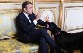 HARI BASTILLE: Macron Pimpin Parade Militer di Paris