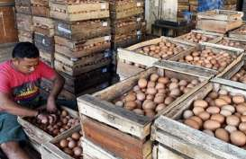 Harga Telur di Solo Turun, Daging Ayam Bertahan Tinggi