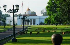HUT RI ke-73, Istana Kepresidenan Gelar Pameran Benda Seni