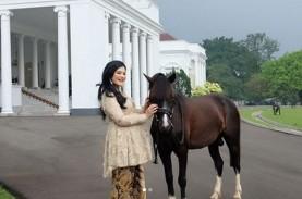 Selamat! Presiden Jokowi Menanti Kehadiran Cucu Kedua