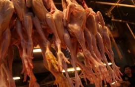 Harga Daging Ayam Masih Bebani Inflasi Sumsel