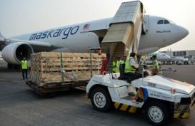 Ekspor Kambing dari Jatim Ditargetkan Mencapai 60.000 Ekor