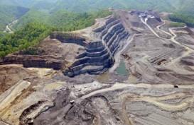 Korupsi Sumber Daya Alam: Walhi Desak KPK Tindak Korporasi