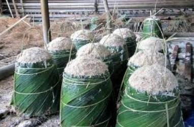 Riau Dorong Konsumsi Sagu Gantikan Beras