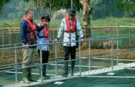 Cargill Buka Pusat Aplikasi Teknologi Peternakan Ikan di Bogor