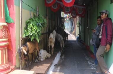 SEJARAH KOTA, Pasar Kambing Semarang Dulu & Kini