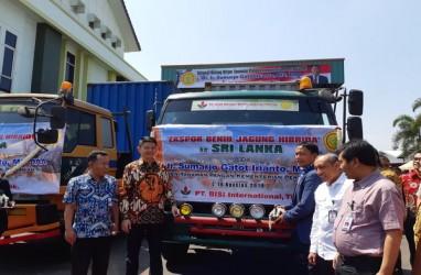 BISI Targetkan Bisa Ekspor 500 Ton Benih Jagung ke Sri Lanka & Pakistan