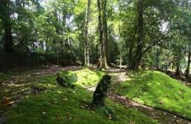 Tiap Tahun, LIPI Buka 2 Kebun Raya Baru