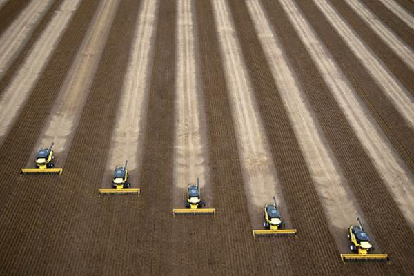 Mesin pemanen kedelai tengah beroperasi di ladang Brasil. - Bloomberg
