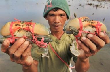 Proses Hukum Nelayan Penangkap Kepiting Bakal Berlanjut