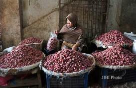 Bangli Diusung Jadi Sentra Produksi Baru Bawang Merah