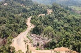 Begini Progres Pembangunan Jalan Perbatasan di Kalimantan