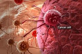 Perawatan Paliatif Tumbuhkan Harapan Penderita Kanker