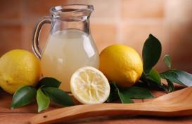 Lemon Terbukti Ampuh Turunkan Berat Badan