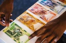 Bank Sentral Afrika Selatan Bakal Susul Turki Kerek Suku Bunga?