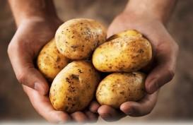 2 Sumber Karbohidrat untuk Diet Sehat, Hindari Jus Buah
