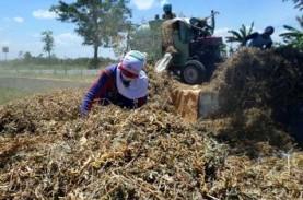 Jateng Pacu Produksi & Kampanyekan Kedelai Lokal
