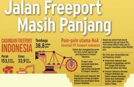 Ini Peluang Proyek Kolaborasi ANTM & PTBA dengan Freeport