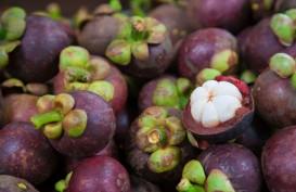 RI Targetkan Ekspor Manggis 60.000 Ton ke China