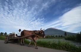 Demi Tour de Singkarak, Jambi Perbaiki Jalan di Kerinci