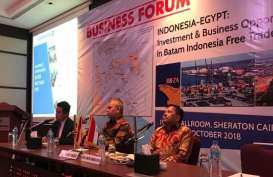 Batam Tawarkan Peluang Investasi Berbagai Sektor ke Pebisnis Mesir