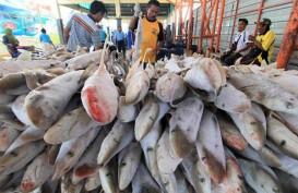 Terpengaruh Cuaca, Pendapatan Penjualan Ikan di Kendari Menurun