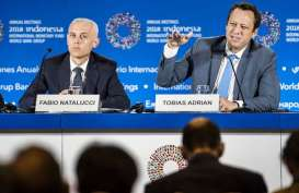 IMF: Risiko Arus Modal Keluar di Negara Berkembang Menjadi Lebih Besar