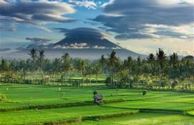 Tingkatkan Kunjungan Pariwisata, Denpasar Dorong Kampung Hijau