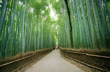 Dubes RI untuk Argentina Tertarik Pengolahan Bambu di Tabanan
