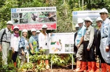 Menteri LHK: Pusat Gambut Internasional, dari Indonesia untuk Dunia