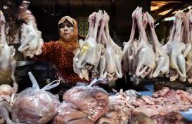 Harga Daging Ayam Beku di Seram Masih Mahal