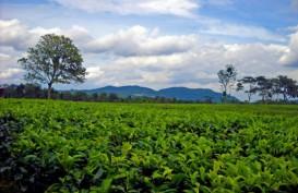 RASTER : Menjajakan Produk Agri Indonesia Hingga ke Ujung Dunia