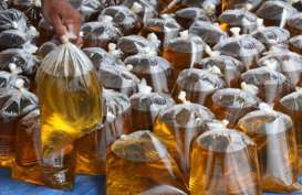 Pabrik Minyak Goreng Berkapasitas 200 Ton/Hari Dibangun di Bengkulu