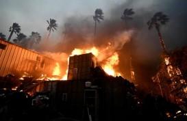 Ratu Elizabeth Nyatakan Belasungkawa untuk Korban Kebakaran California
