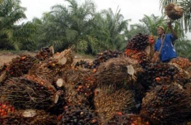 Austindo Nusantara Jaya Beri Pelatihan Vokasi di Papua Barat