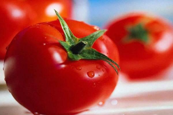 Tomat - Istimewa