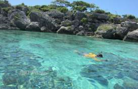 Selayar Buka Potensi Investasi Wisata Bahari