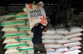 Stok Sembako di Bulog Provinsi Maluku Aman