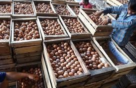 Harga Telur di Temanggung Rp23.000 / Kilogram
