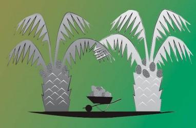 PENANAMAN MODAL : Kepri Tolak Investasi Kelapa Sawit di Lingga