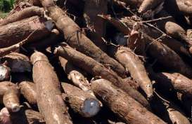 Produk Organik Indonesia Jajaki Pasar Inggris