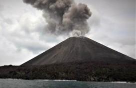 Update Korban Tsunami Selat Sunda: 43 Meninggal, 584 Luka-Luka, 2 Hilang