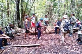 Lima Penebang Kayu di Sarawak Ditangkap TNI, Dimintai…