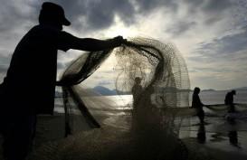 Nelayan di Sumut Masih Terus Gunakan Pukat Harimau
