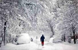 Empat Turis Finlandia dan Swedia Terjebak Longsoran Salju
