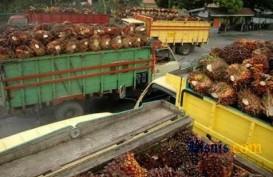 Musi Banyuasin Didorong Bangun Pabrik Pengolahan Sawit