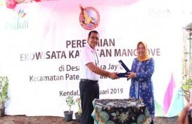 UP3 Semarang Kembangkan Ekowisata Mangrove di Kendal