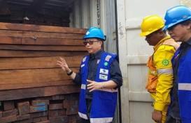 Kementerian Lingkungan Hidup dan Kehutanan Amankan 384 Kontainer Kayu Ilegal dari Papua