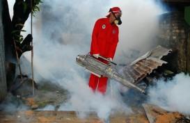 Bangka Belitung Waspada Demam Berdarah